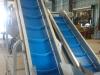 grape incline conveyors